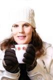 冷冬天 免版税库存图片
