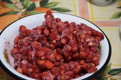 冷冻草莓 免版税库存照片