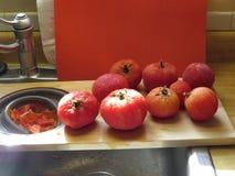 冷冻蕃茄 免版税图库摄影