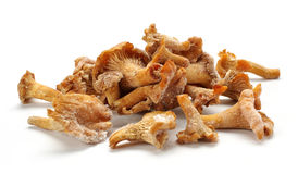 冷冻蘑菇 免版税库存图片