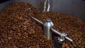 冷却的咖啡豆在烤以后 烧烤机器,特写镜头 股票视频