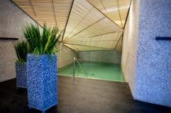 冷却的池温泉 库存照片