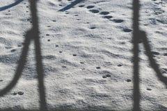 冷和雪白背景 冷淡好日子和凉快 r 酥脆雪纹理在地面上的 图库摄影