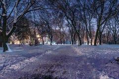冷日冬天 免版税库存照片