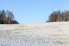 冷日荷兰公园雪冬天 图库摄影