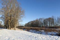 冷日荷兰公园雪冬天 免版税库存照片