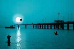 冷月亮日落 免版税库存图片
