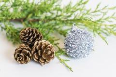 冷杉分支、三pinecones和闪亮金属片假日装饰在whi 库存照片