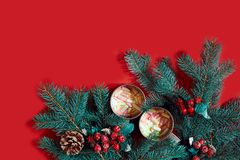 冷杉分支、礼物盒和两个杯子可可粉用在红色背景的蛋白软糖 免版税库存图片