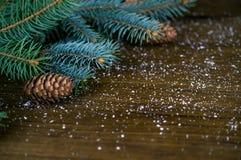 冷杉分支、锥体和雪在木背景 库存照片