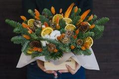 冷杉分支和干桔子的构成在木箱 免版税库存图片