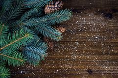 冷杉分支和锥体在木背景 免版税图库摄影