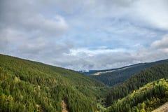 冷杉和其他杉树在山在Vidra湖Lacul Vidra附近在伸出谷的夏天/秋天下午的一个多云结尾 库存图片