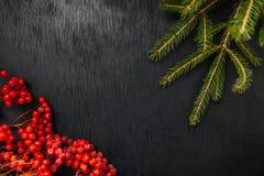 冷杉和花揪 黑色背景 抽象空白背景圣诞节黑暗的装饰设计模式红色的星形 美丽的照片 免版税库存图片