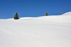 冷杉小山多雪的三个结构树 免版税库存图片