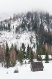 冷杉木和农民房子积雪的山的,喀尔巴汗,乌克兰 免版税库存照片