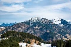 冷杉木和山在德国 免版税库存照片