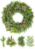从冷杉杉木云杉枝杈的圣诞节花圈有锥体的 免版税库存图片