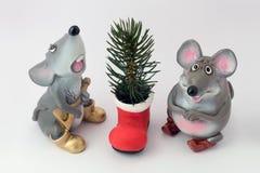 冷杉老鼠似的结构树 库存图片