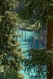 冷杉kaindy湖 库存图片