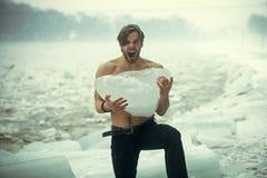 冷气候和冰河时期 库存图片