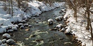 冷水任何人 流动在冬天的特拉基河 图库摄影