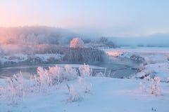 冷淡的冬天日出 库存照片