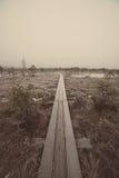 冷淡的冬天沼泽的-年迈的照片木木板走道 免版税图库摄影