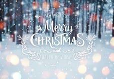 冷淡的冬天风景在与冷杉木的多雪的森林圣诞节背景和冬天被弄脏的背景中与文本的 免版税库存照片