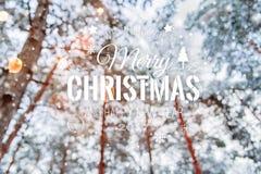 冷淡的冬天风景在与冷杉木的多雪的森林Xmas背景和冬天被弄脏的背景中与文本圣诞快乐的 库存照片