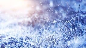 冷淡的早晨冬天 冬天雪背景,蓝色颜色,雪花,阳光,宏指令 免版税库存照片
