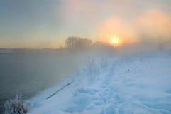冷淡的早晨冬天 图库摄影
