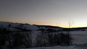 冷淡的早晨本质降雪冬天 免版税库存照片