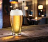 冷淡的杯在酒吧柜台的低度黄啤酒 免版税库存照片
