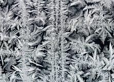 从冷淡的样式的欢乐背景与美丽复杂 库存图片