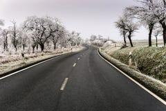 冷淡的横向冬天 免版税库存照片