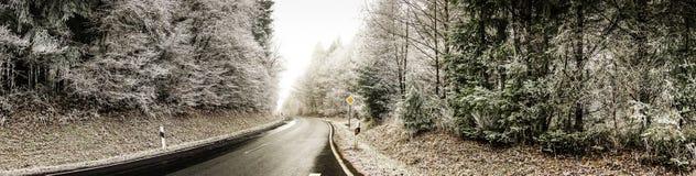冷淡的横向冬天 免版税库存图片