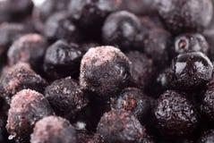 冷淡的蓝莓 免版税库存图片