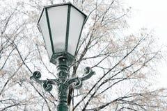 冷淡的街灯在一个冷的冬日 免版税库存照片