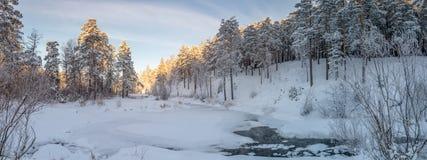 冷淡的晴天在乌拉尔有一条冻河的,俄罗斯一个森林, 库存照片