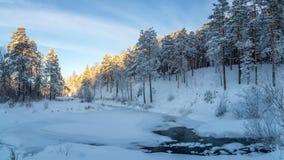 冷淡的晴天在乌拉尔有一条冻河的,俄罗斯一个森林, 免版税图库摄影