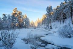 冷淡的晴朗的早晨在乌拉尔森林里,河,俄罗斯 库存图片