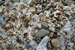 冷漠的伊利湖岸 免版税库存图片