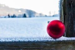 冷漠的圣诞节 库存图片