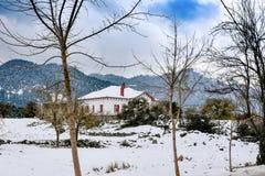 冷漠的多雪的风景 没有叶子的树在房子前面 免版税库存图片