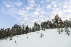 冷漠的横向在拉普兰,芬兰 免版税库存图片
