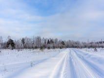 冷的农村风景 免版税图库摄影
