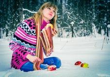 冷的冬天 免版税库存照片