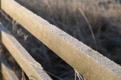 冷的冬日早晨霜  免版税库存图片