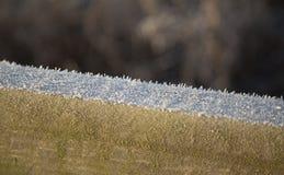 冷的冬日早晨霜  库存照片